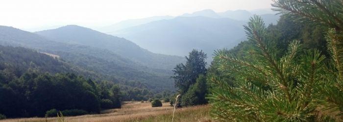 Závod 1000 Miles Adventure, den #3 – Jak jsem prvně chystal pepřák