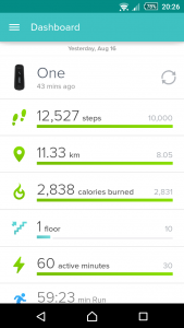 Fitbit One - dashboard