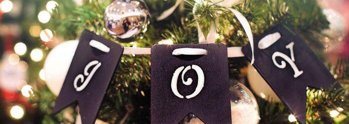 Muž pánem domácnosti #11 – Zařizuju Vánoce